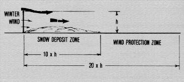 Ncr 191 figure 3 protection zone for a porous windbreak fence publicscrutiny Image collections