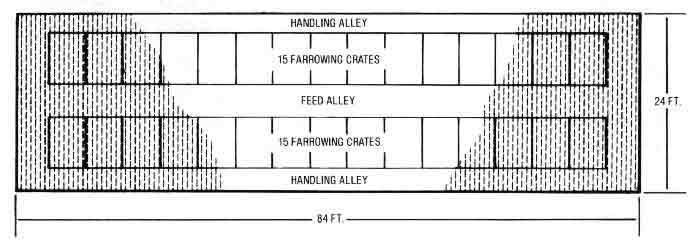 AE  Plan view of  sow farrowing house used in example